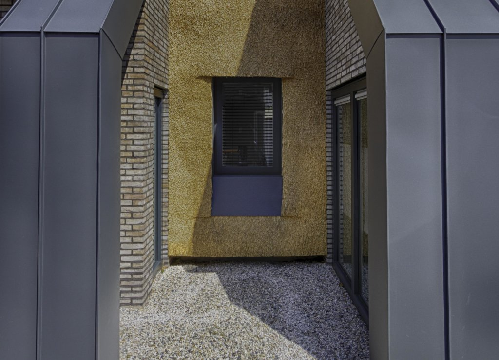 Moderne woning riet